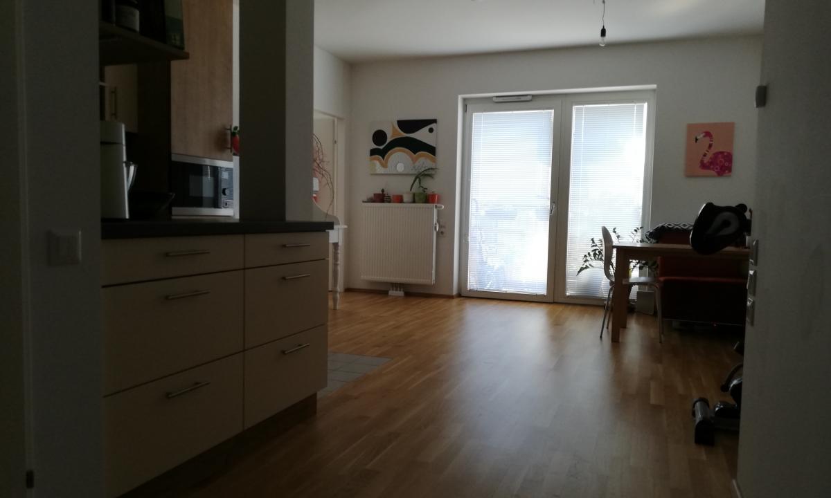 Überblick-Foto des Wohnraums aus der Eingangs-Perspektive