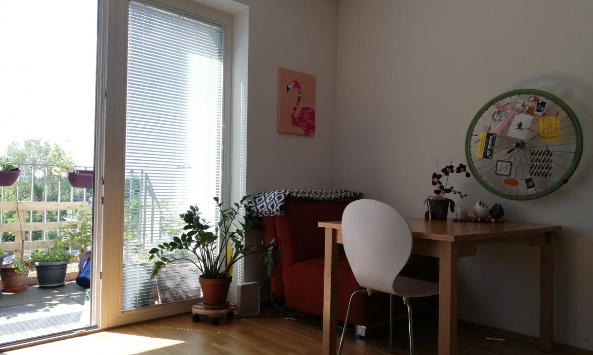Esstisch mit einem grünem Rad an der Wand und Ausblick zum Balkon